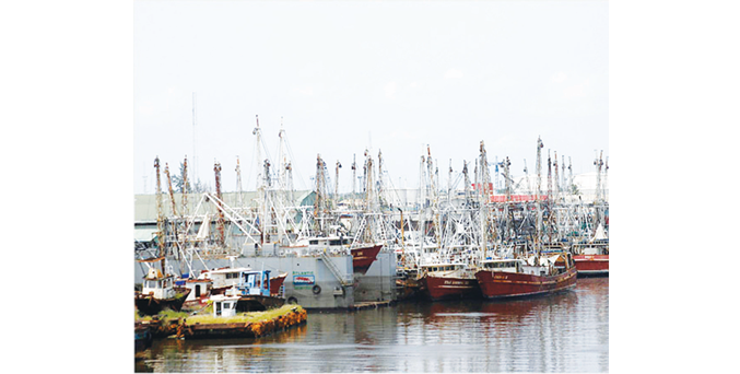 Customs accuses shipping lines of aiding arms proliferation