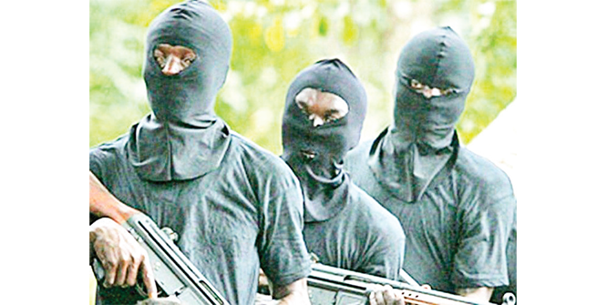 Bandits kill 11, abduct district heads, six others in Niger