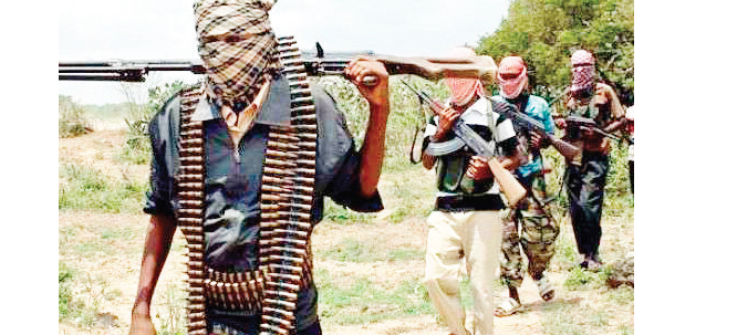Gunmen kidnap two expatriates, six Nigerians
