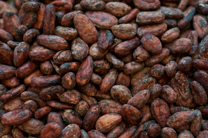 Cocoa exporters lose N117bn to price fluctuation