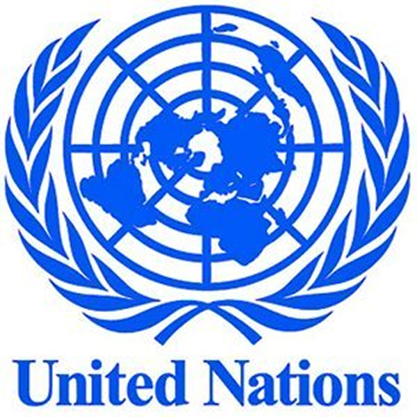 Number of registered parties in Africa worrisome –UN