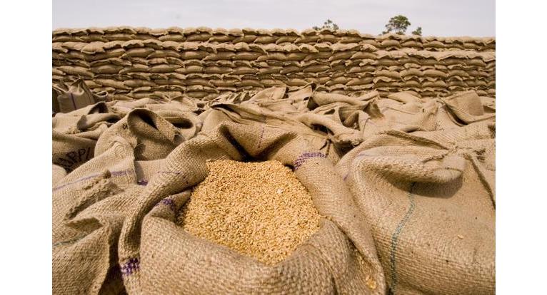 Nigeria imports N163bn wheat from U.S.