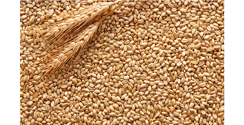 Eight vessels offload N46.7bn wheat in one month