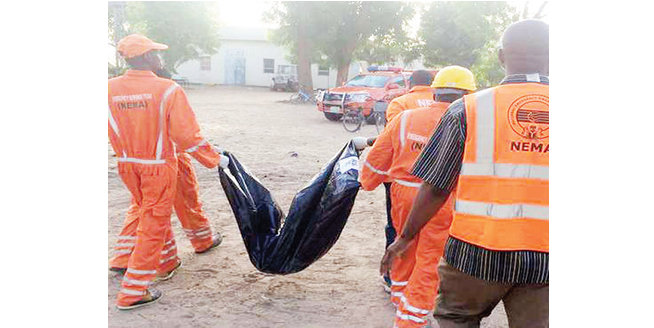 'NEMA didn't receive cash for North-East's N5.8bn relief materials'