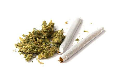 Heavy marijuana use could reduce sperm quality