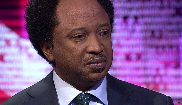 Shehu Sani, 14 APC aspirants reject indirect primaries in Kaduna