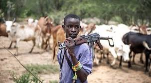 Herdsmen attack passengers on Ife-Ibadan highway