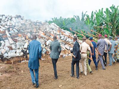 NDLEA destroys 110.5 tons of illicit drugs