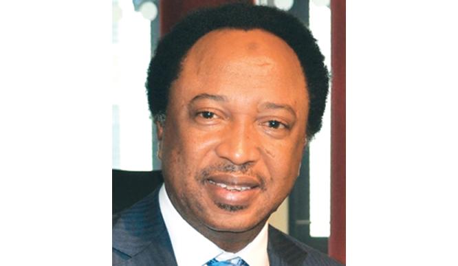 2023: Presidency should go to South East, says Shehu Sani