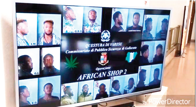10 Nigerians arrested for drug peddling in Italy
