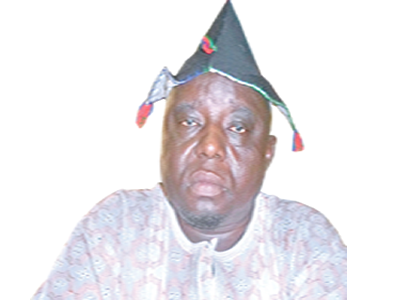 Nigerians must be wary of agents of destabilisation – Dansudu