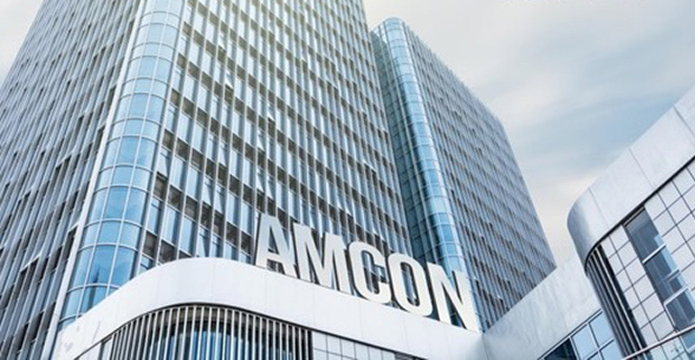 N1bn debt: AMCON takes over former minister's assets