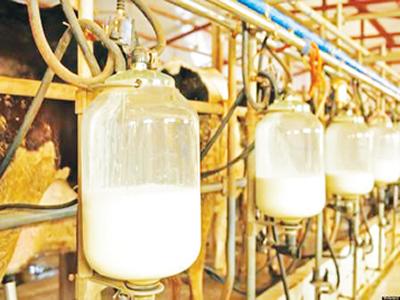 Gains, politics of FX restriction on milk import
