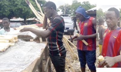 'How we survive selling sugarcane'