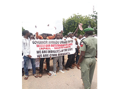 Adamawa civil servants protest non-payment of six months salaries