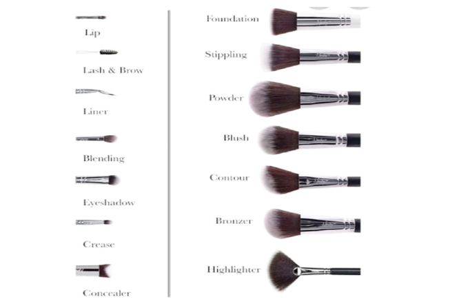 Makeup brushes and their specific uses