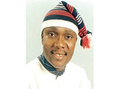 Okorocha's govt destroyed rice production in Imo –Ohia